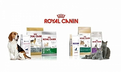 Встречайте! Royal Canin в Зоомаркет!